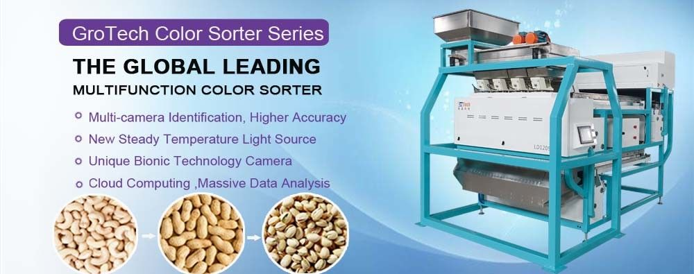 China best Nuts Color Sorting Machine on sales