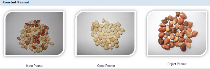 peanut color sorter