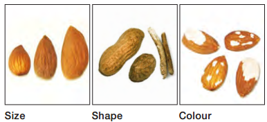 size ,shape ,color sorting