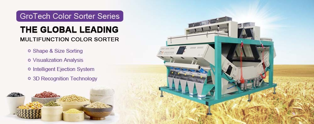 China best Peanut Color Sorting Machine on sales