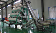 how to sort tea? tea color sorter machine from China,color sorting machine for tea processing