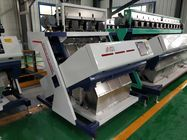 China coffee bean sorting machine factory